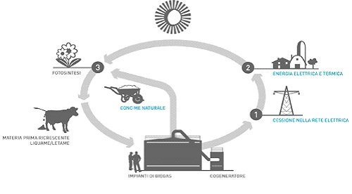 Biogas e Gassificazione - Ciclo di produzione
